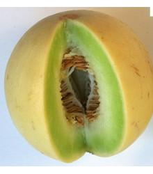 More about Meloun cukrový - semena - 5 ks