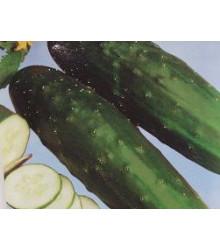 BIO Okurka salátová polní - semena okurky - 0,3 g