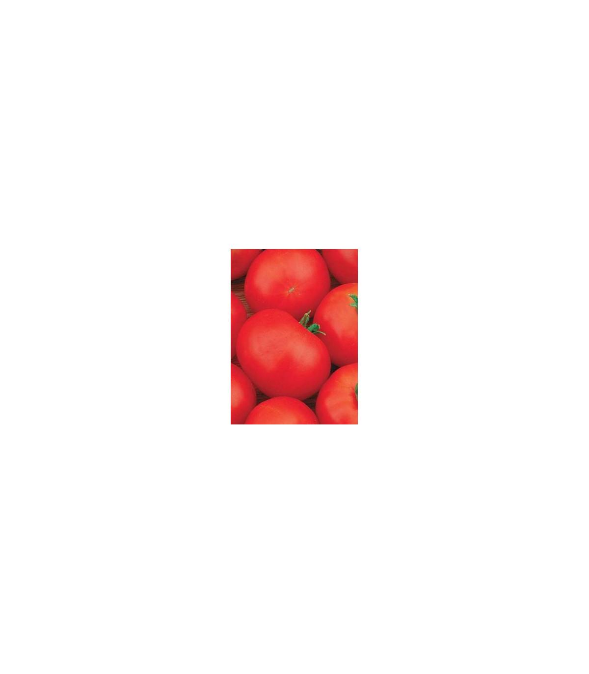 Rajče Hana - keřičková rajčata - Lycopersicon Esculentum - semena rajčat - 20 Ks