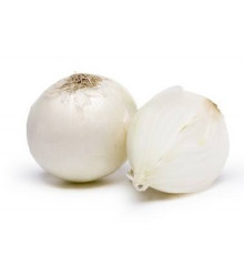 Cibule jarní bílá- semena Cibule- 350 ks