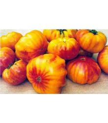 Rajče dvoubarevné- semena rajčete - původní odrůdy rajčat - 6 ks