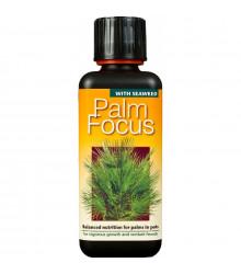 Hnojivo pro palmy - Palm focus - 300 ml