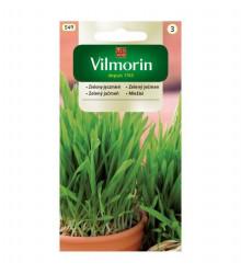 Semena na klíčky - Zelený ječmen - 20 g