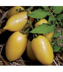 Rajče - Párek - semena rajčat - původní odrůdy rajčat - 6 ks