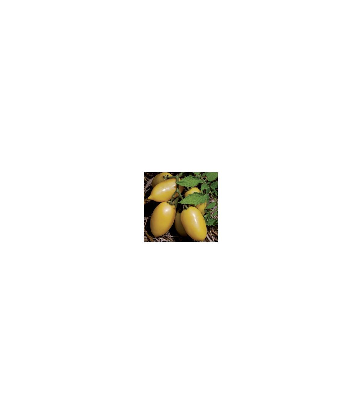 """Rajče- """"Jelito""""- semena- 6 ks"""