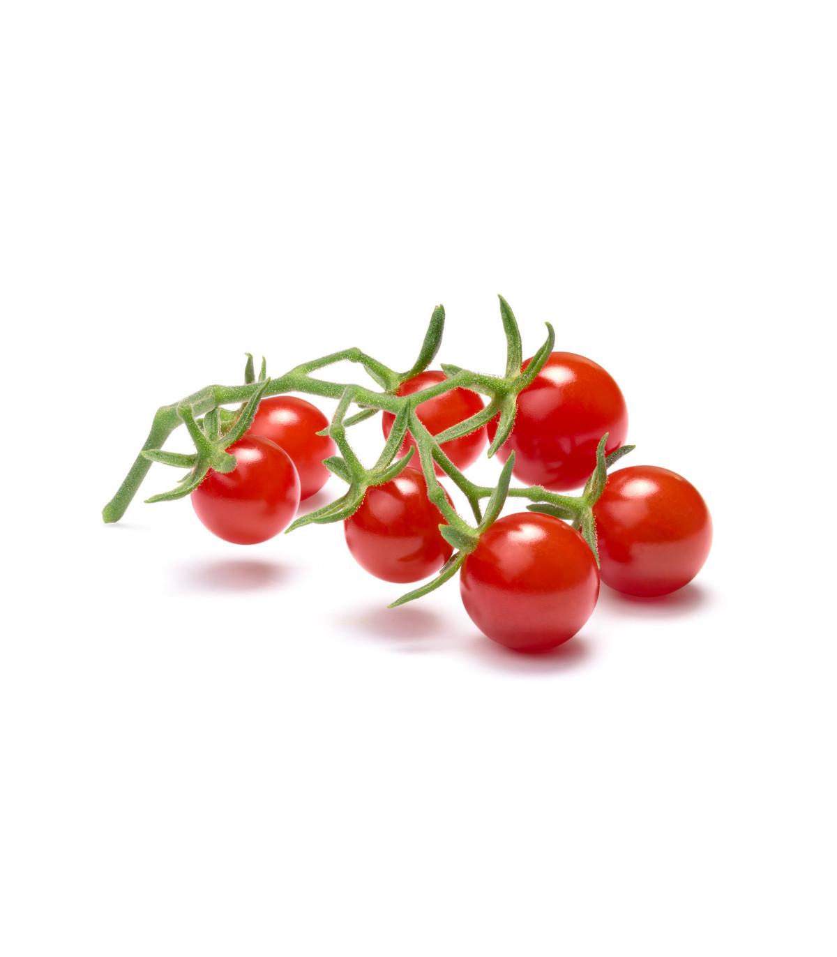 Divoká rajčátka - Solnum pimpinellifolium - prodej semen divokých rajčat - 6 ks