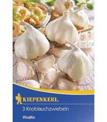 Česnek sadbový Vivalto - prodej česneku- 3 ks