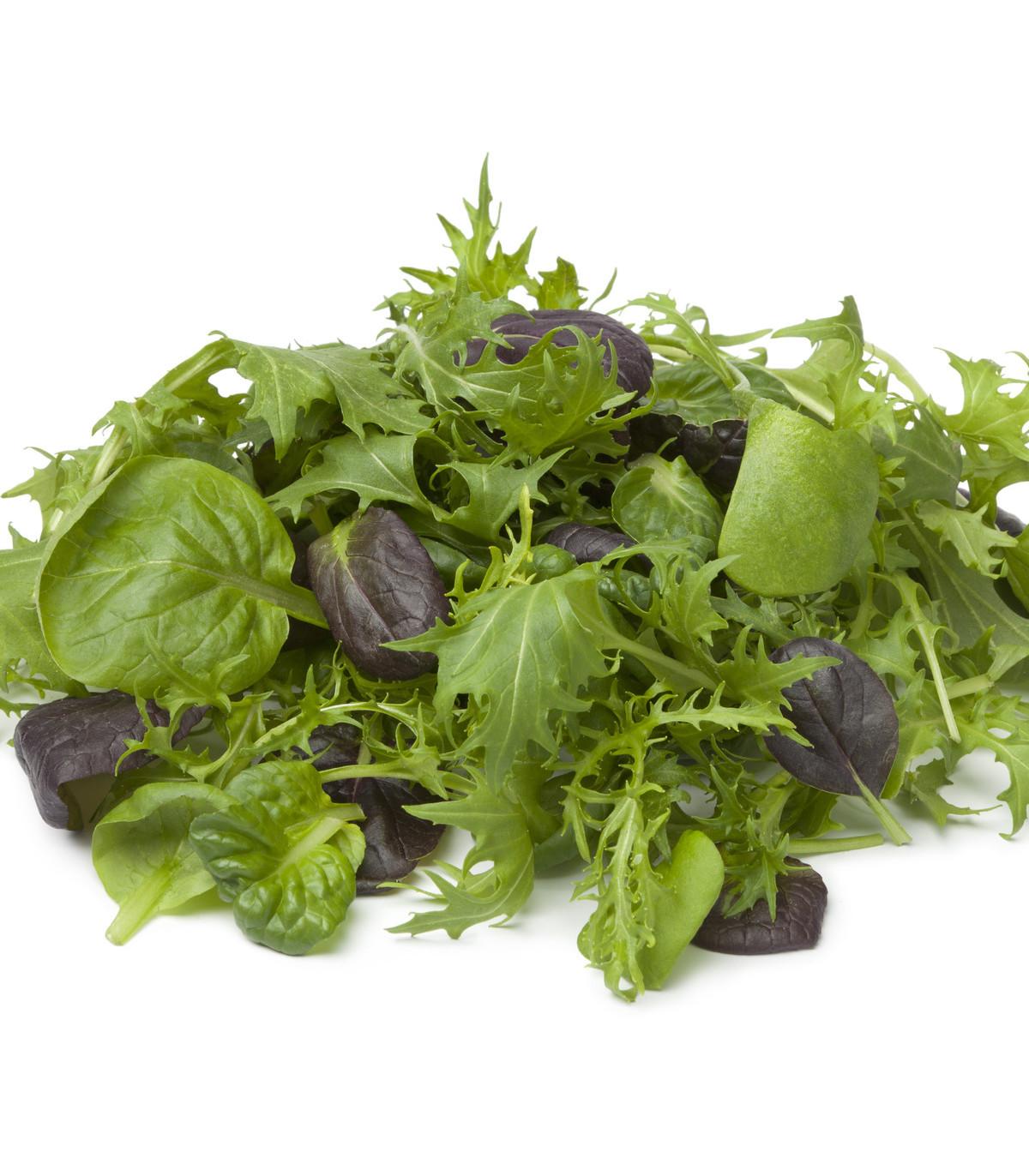 Mix aromatických salátů - semena salátu - 60 ks