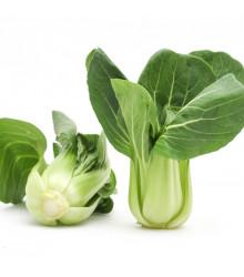 Pak Choi Sagami - Brassica rapa var rosularis - osivo pak choi - 150 ks
