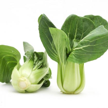 Pak Choi čínské zelí Sagami - Asijská zelenina - prodej semen asijské zeleniny - 150 ks