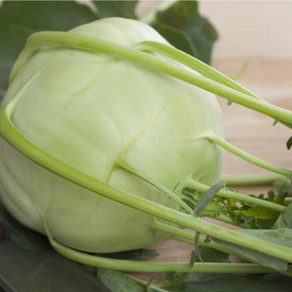 Kedluben obří Superschmelz - Brassica oleracea - osivo kedlubny - 300 ks