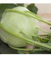 Kedluben obří Superschmelz - osivo kedlubny - 1 gr