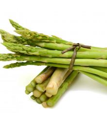 More about Chřest lékařský Mary Washington - Asparagus officinalis - semena chřestu - 35 ks