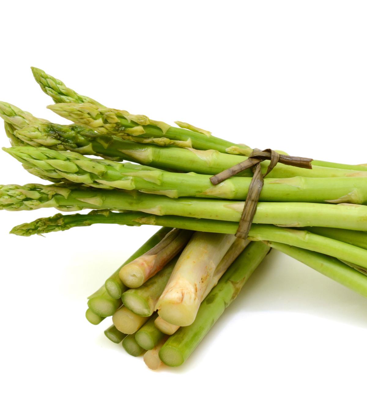 Chřest lékařský Mary Washington - Asparagus officinalis - semena chřestu - 35 ks