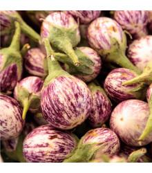 More about Lilek Listada - prodej semen baklažanu - 7 ks