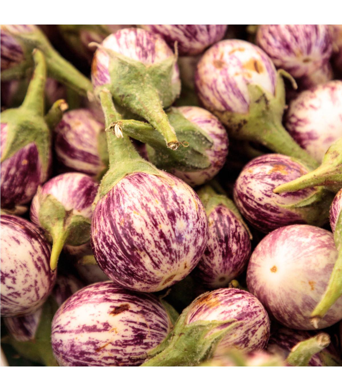 Lilek Listada - prodej semen baklažanu - 7 ks