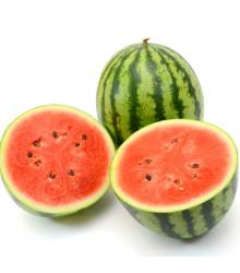 Meloun vodní Crimstar F1 - Citrullus lanatus - semena melounu - 6 ks