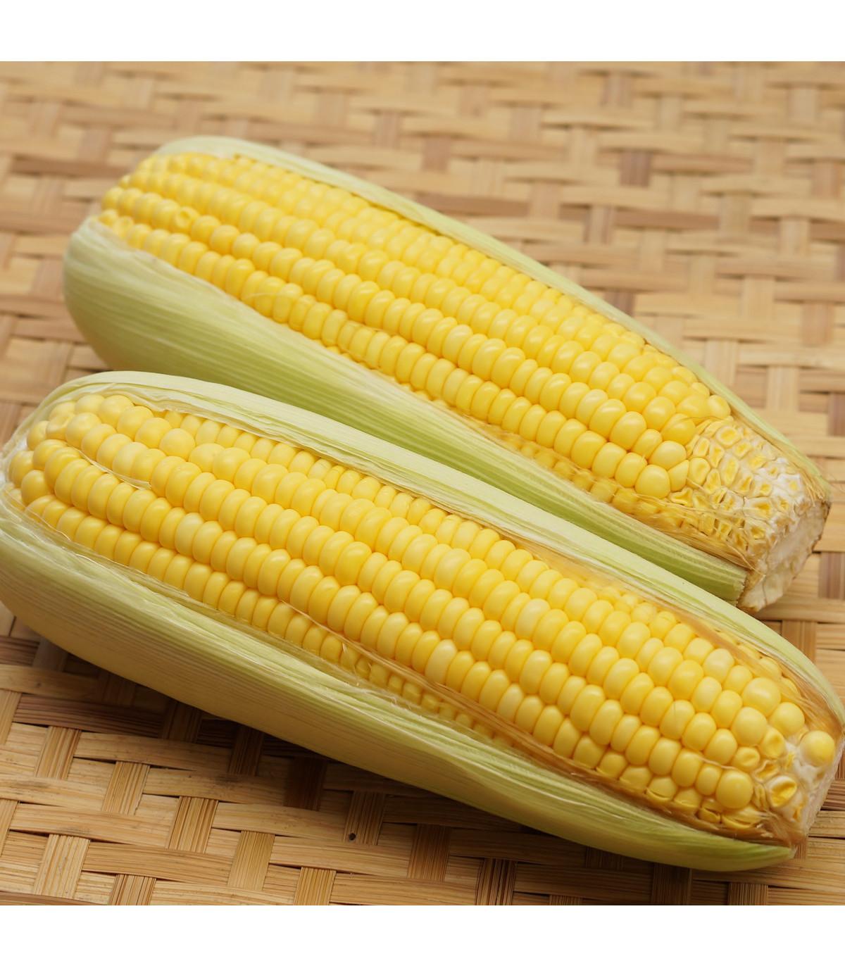 Kukuřice cukrová mořená Snowbaby - Zea Mays - osivo kukuřice - 16 ks