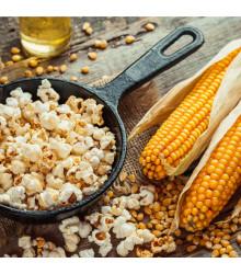 Kukuřice pukancová F1 Nana - Zea mays - semena kukuřice - 15 ks