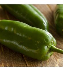 Chilli Anaheim - Capsicum annuum - semena chilli - 6 ks