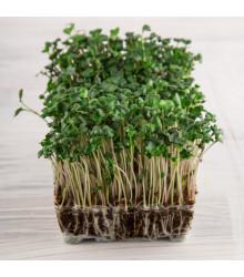 BIo řeřicha Kresso - bio semena řeřichy - 150 ks
