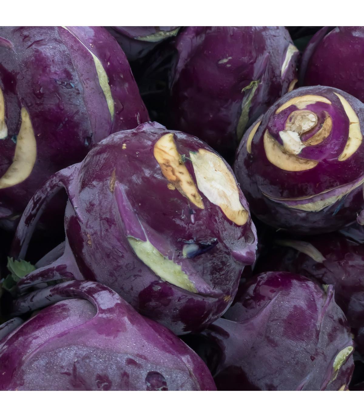 BIO kedluben Azur - Brassica Oleracea L. - bio osivo kedlubny - 50 ks