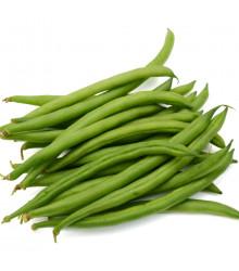 More about Fazol keříčkový Saxa - Phaseolus vulgaris - semena fazolu - 20 ks