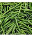 Fazol keříčkový Dublette - prodej semen fazole - 8 ks