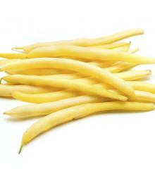 Fazol keříčkový Hildora - Phaseolus vulgaris L. - prodej semen fazole - 10 gr