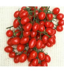 Rajče - Rosalita - semena rajčat - původní odrůdy - 7 ks