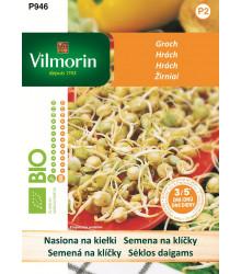 Bio semena na klíčky - Slunečnice - 20 g