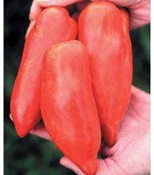 More about Rajče - Howard - semena rajčat - původní odrůdy - osivo rajčata - 7 ks
