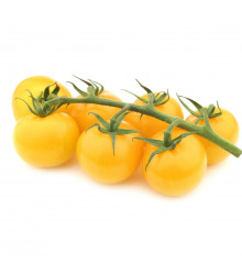 Bio rajče Topaz koktejlové - Lycopersicon esculentum - bio semena rajčat - 6 ks