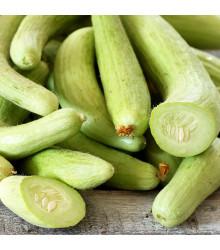 Okurka arménská Yard long - Cucumis melo - prodej semínek - 6 ks