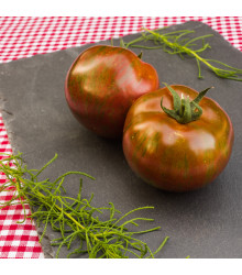 Bio rajče Black Zebra - Solanum lycopersicum - bio semena rajčat - 7 ks