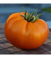 More about Rajče Wellington F1 - Solanum lycopersicum - semena rajčat - 7 ks