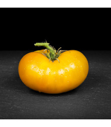 Rajče Azoychka - Lycopersicon Esculentum - semena rajčat - 8 ks