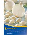 Cibule sazečka Silvermoon - Allium cepa - 50 ks