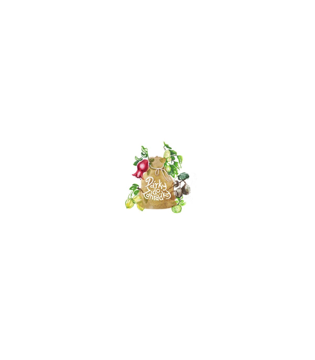 Exotické plody - balíček nejoblíbenějších exotických rostlin - dárkové balení zdarma