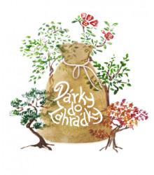 Dárkové balení semen bonsají - dárkový sáček s visačkou zdarma