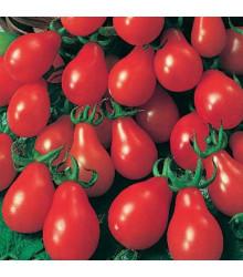 More about Rajče Červená hruška - Lycopersicon Esculentum - semena rajčat - 7 ks