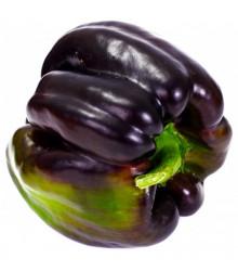 Paprika Zulu - Capsicum Annuum - osivo papriky - 10 ks