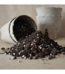 Speciální substrát pro palmy - semena palem - 100 gr