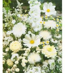 Letničky směs - Zahradní sen v bílém - prodej semen letniček - 0,9 gr