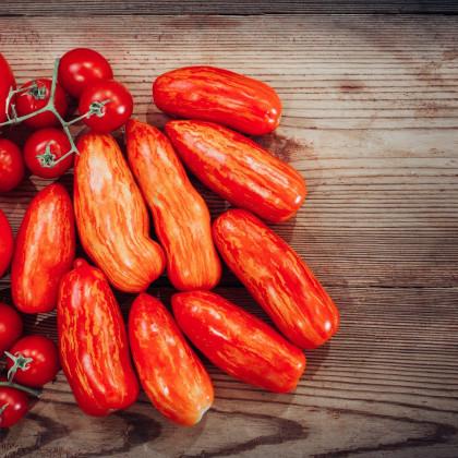 Rajče okrasné - Skvrnitý Říman - semena původních odrůd rajčat - 6 ks