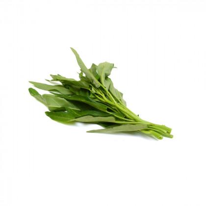 Ostatní listová zelenina