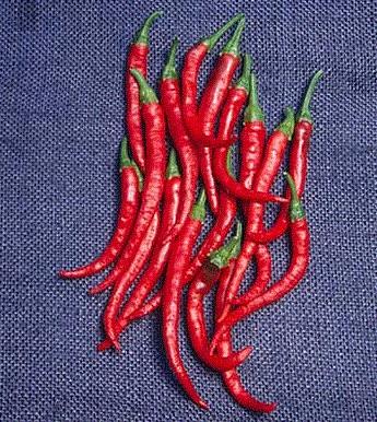 Kajenský pepř - Cayenne pepper - EXTRA dlouhý - 6 ks